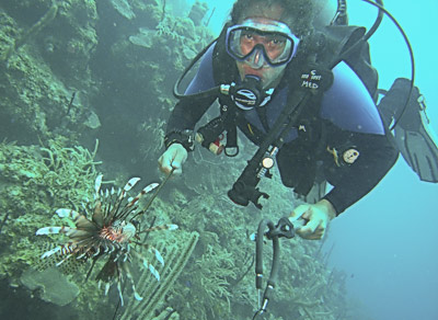 st croix dive Lionfish hunt