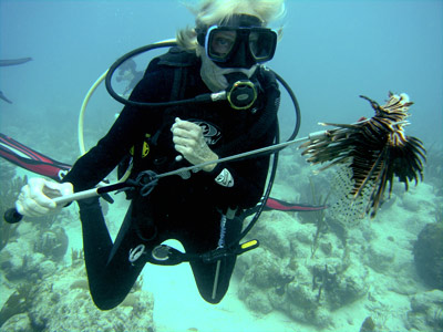 Lionfish Hunt with Dive Experience Croix
